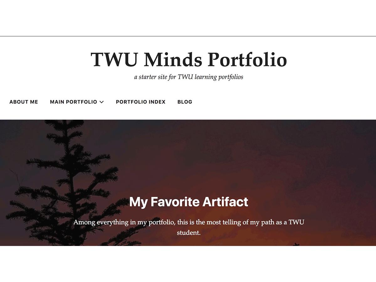 TWU Minds Portfolio Theme